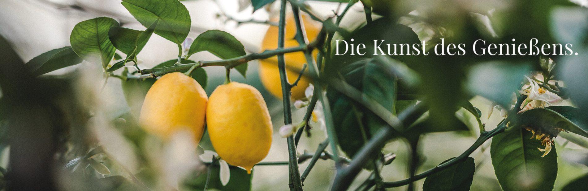 Zitrone Claim